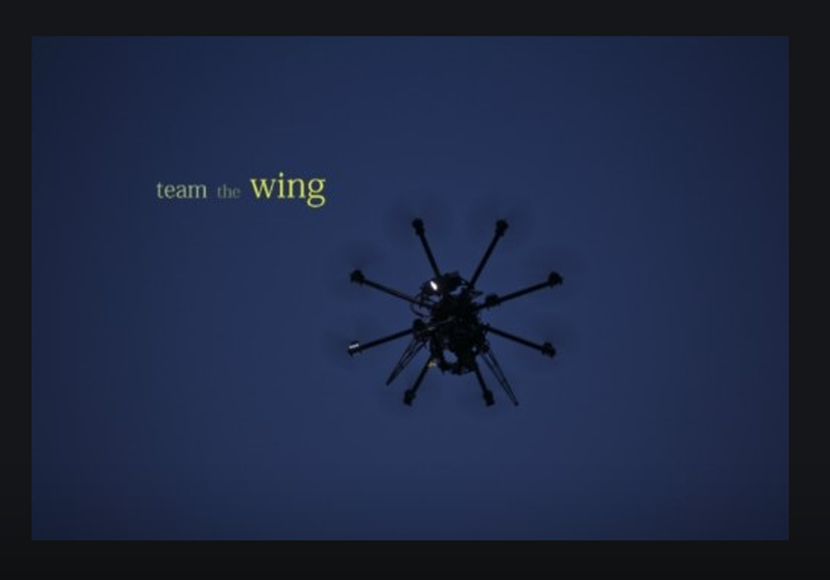 team the wing