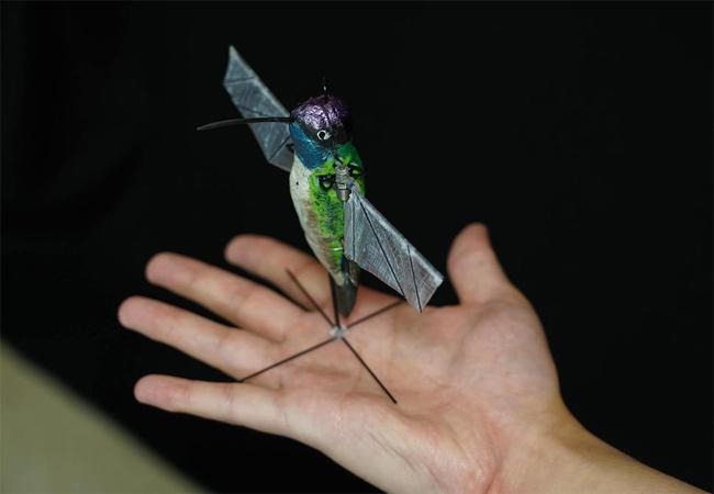 인공지능 날갯짓 배운 벌새로봇 날다